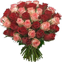 Розы разных цветов в букете фото